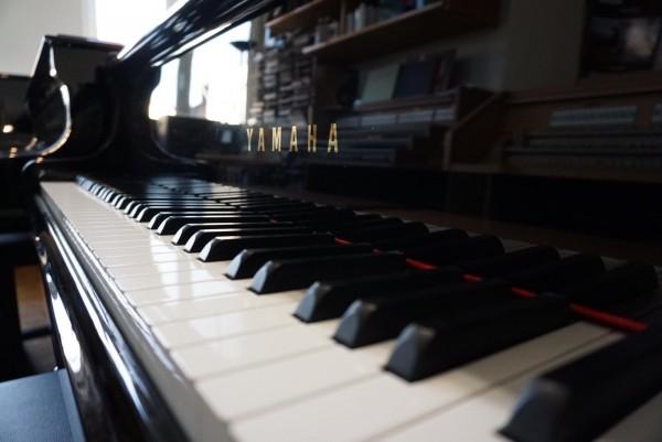 Yamaha Flügel C-3 Pianodisk